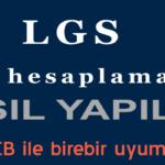 LGS Puan Hesaplama Nasıl Yapılır?